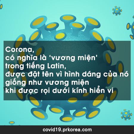 Corona là gì?